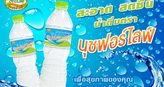water-nuch
