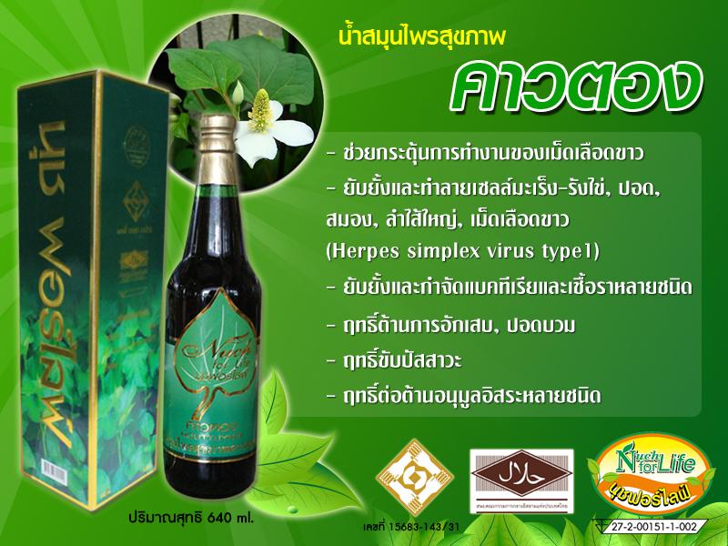 kaothong3